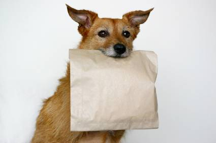 No allo spreco con la Doggy Bag